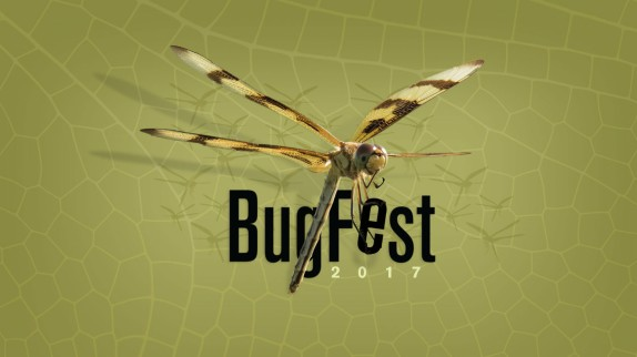 Photo in the BugFest 2017 graphic